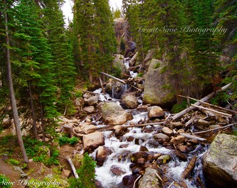 Waterfall Forest, Photography, Home Decor