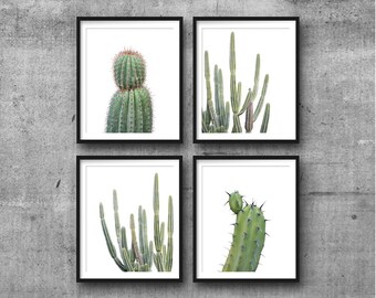 Set Of 4 Prints, Cactus Set, Succulent Print, Botanical Print Set, Cactus Photography, Wall Art, Cactus Wall Decor, Prints, Cactus Prints