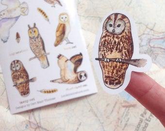 Animal stickers: owl sticker sheet