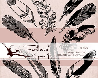Feathers - Vintage Design Elements/ Digital Clipart/ Calligraphy Black Silhouette Clipart/ PNG/ Graphic Design Elements in Inks - Pack 1