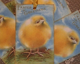 Baby Chick Easter Greetings Gift Tags