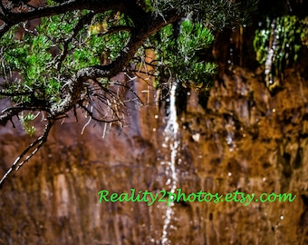 Mountain Photography. Waterfall print. Tree Photo. Nature Photography. Color Print.