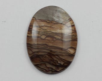 Picture Jasper Cabochon 30x40 Oval Deschutes Oregon Biggs Jasper L16 Vintage Hand Cut Agate