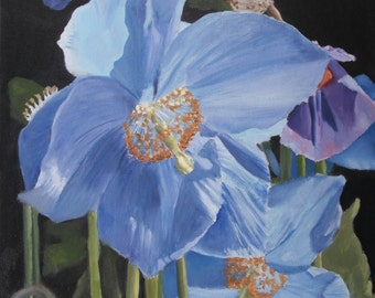 Poppy flower, floral, green, blue, hyper realistic nature oil painting