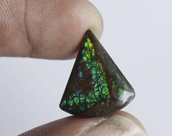 Canadian Ammolite designer cabochon, Green Flash Ammolite, Triangular Shape, 9ct Natural Gemstone Cabochons AG-1061