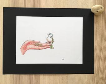 Little bird - drawing - free shipping