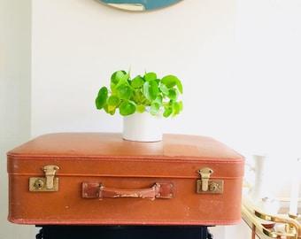 50s vulcanfiber suitcase   vintage koffer   brocante koffer   dutch vintage suitcase  
