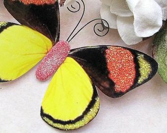 Butterfly Embellishments Tropicana