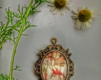 Botanical gifts