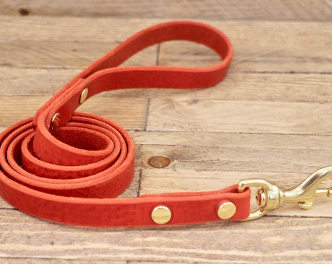 Leather lead, Cayenne, Dog leash, Leather dog leash, Walk leash, Lead, Solid brass hardware, Handmade leather leash, Dog collar, Red leash