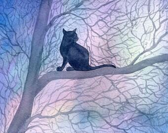 Cat kitten quiet landscape 8x10 print