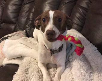 Medium-Sized Flannel Dog Chew Toys