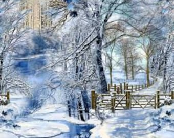 Winter by Timeless Treasures.  This is a cotton fabric panel.