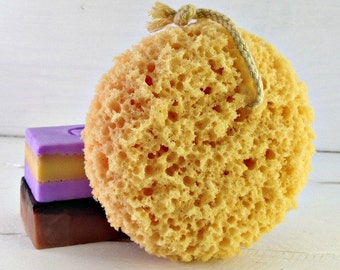 Wholesale Foam Sponges, Bath Sponge, Hanging Bath Sponge, Spa Accessories, Shower Sponge, Sponge, Sponges, Loofah, Facial Puff,