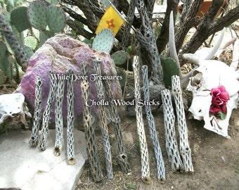"""Cholla Cactus bâtons ~ Cholla bois 9""""-19» bio Animal perchoir, sud-ouest Decor, plante d'Air Terrarium. Jeu de jardin. Manche à balai, baguette magique"""