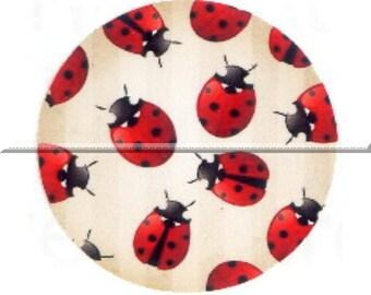 1 cabochon 30mm glass, lucky Ladybug