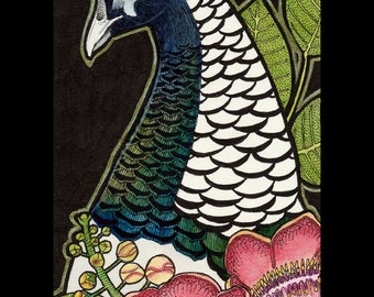 Lady Amherst's Pheasant and Shorea - Original Art