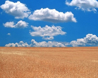Clouds over Wheat Field 8 x 10 print (un-mounted)