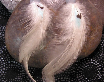 White Parakeet Feather Earrings