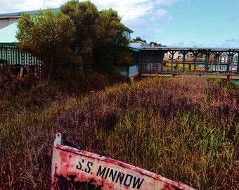 Digitally Painted SS MINNOW Edisto Island Art Photograph INSTANT Download Digital Printable Art Photograph
