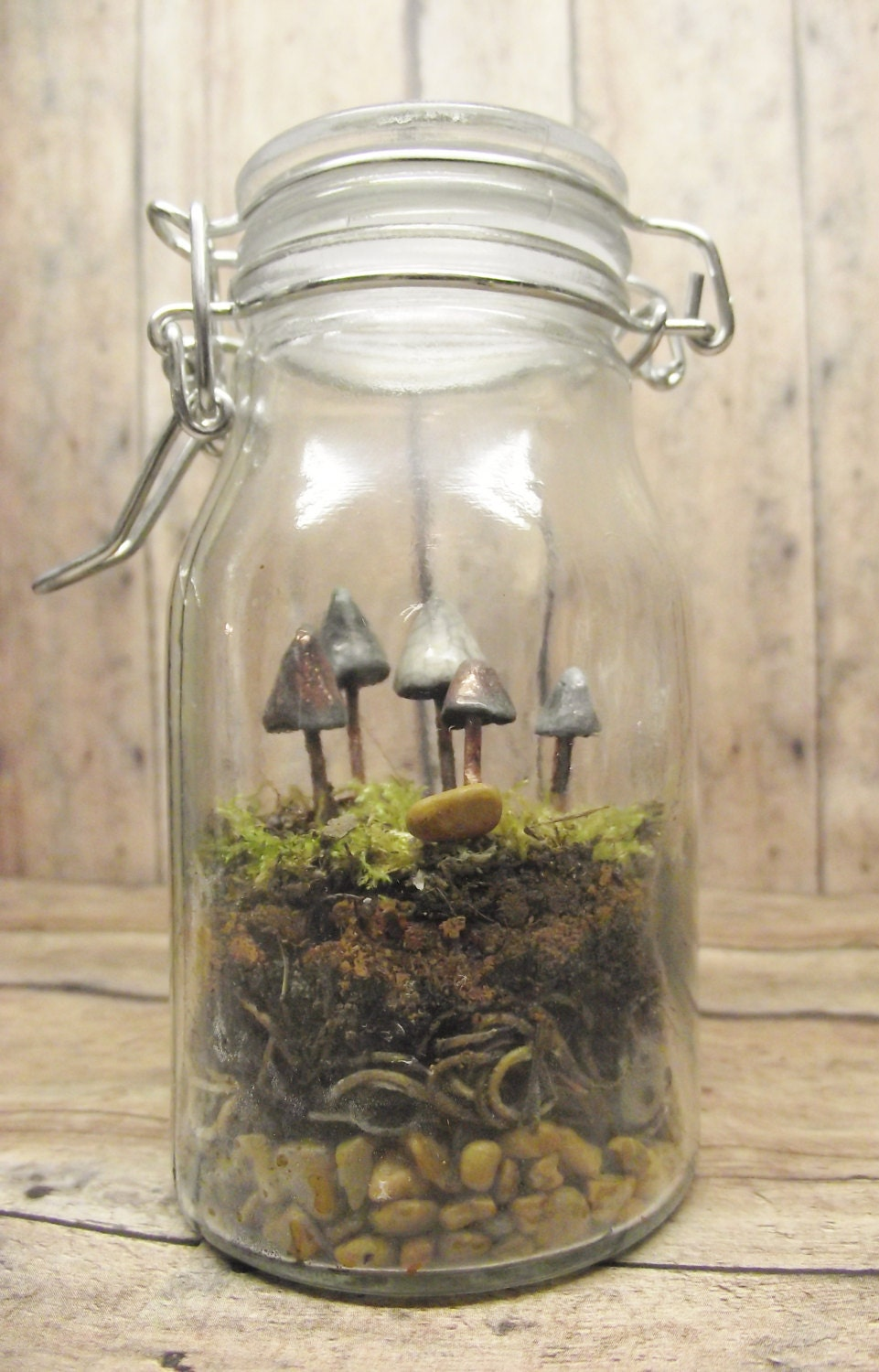 Terrarium Supplies, DIY Terrarium Kit, Glow in the Dark, Mushroom Terrarium, Garden Party, Mushroom specimen, Glass Terrarium, Jar plant
