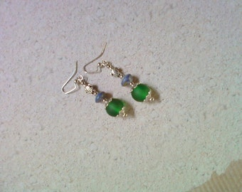 Green and Blue Turtle Earrings (2192)