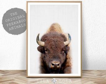 Buffalo Print, Bison Photo, Printable Poster, Instant Digital Download, Boys Nursery Decor, Nursery Animal, Modern Minimalist, Photography