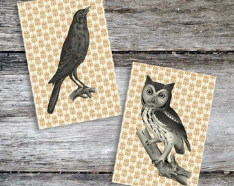 Vintage Style Halloween Owl & Crow Print Set from Curious London