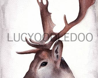 Limited Edition Stag Watercolour Painting Giclee Print