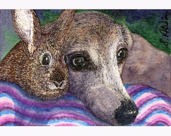 Greyhound, whippet, rabbit, dog 8x10 print - Pals