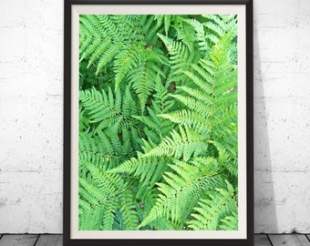 Fern leaf print, tropical leaf print, green leaf art print printable wall art botanical art print digital download, Wall Decor