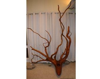 Sky Root Sculpture - Huge! Centerpiece