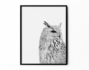 Owl Print, Woodland Wall Art, Animal Portrait, Wild Poster, Nature Art, Black and White, Photography, Natural Decor, Minimalist Art