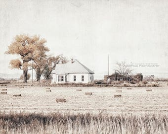 Landscape Photography, Neutral Art, Farmhouse Wall Decor, Gray Decor | 'Haying Time No. 2' - Aged Page Series