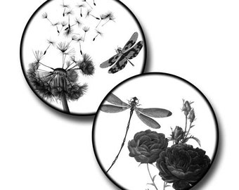 Dragonflies in Nature - 1 inch, 20mm and 0.5 inch circles - (3) digital sheets
