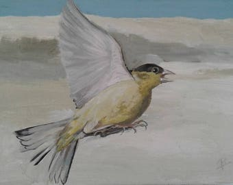 Warbler print  from an original painting by Artist Robin King