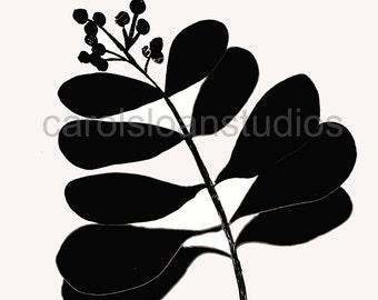 Thermofax Screen Plant Succulent