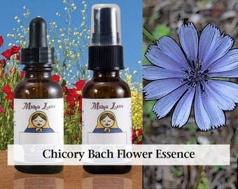 Chicory Bach Flower Essence, 1 oz Dropper or Spray for Unconditional Love Instead of Controlling Behavior or Giving to Get Love