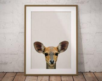 Baby Deer Nursery Print Art, Baby Deer Nursery Decor, Baby Deer Nursery Art, Baby Deer Printable, Nursery Baby Deer Print Art, Baby Deer art