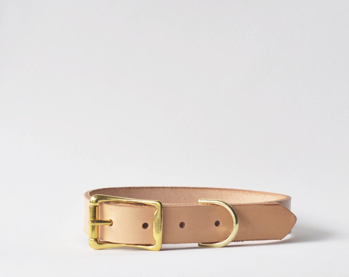 Full grain vegetable tanned leather dog collar, solid brass hardware -