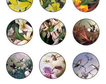 "4x6 1"" (25cm) Round Hummingbird Collage Sheet HB-0001"