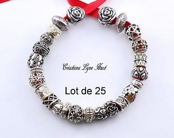 Lot of 25 European charm! 23 different models (C-163) - European beads