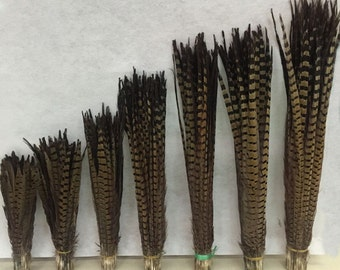 Free Shipping 100pcs Pheasant Feathers 30-60cm 12-24inches Pheasant Feather Center Wedding Decoration