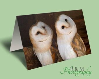 Barn Owls Greeting Card - blank barn owl card - barn owl blank photo greetings card - two barn owls card - bird card for any occasion