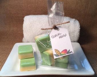 Country Moose Mini Tropical Mango Soap