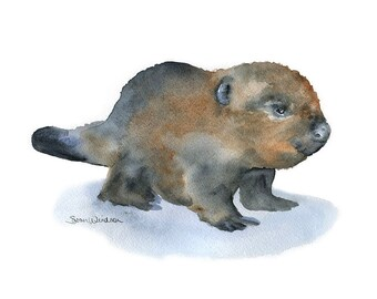 Watercolor Painting Baby Beaver Fine Art Giclee Print 11 x 14 Nursery Art - Woodland Animal