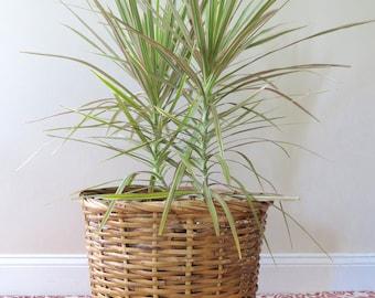 Vintage Large Wicker Basket - Tall Woven Basket - Natural Wicker - Plant Holder - Wicker Storage