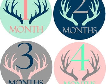 Month Sticker Baby Month Stickers Baby Monthly Stickers Boy Month Sticker Baby Stickers Monthly  Stickers Bodysuit Milestone Stickers