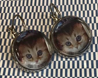 Kitten in jeans earrings - 16mm