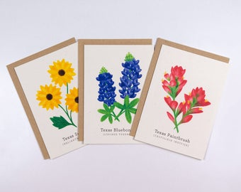 Wildflower Greeting Cards Set of 6 | Texas Bluebonnet Paintbrush Sunflower | Color Pencil Illustration